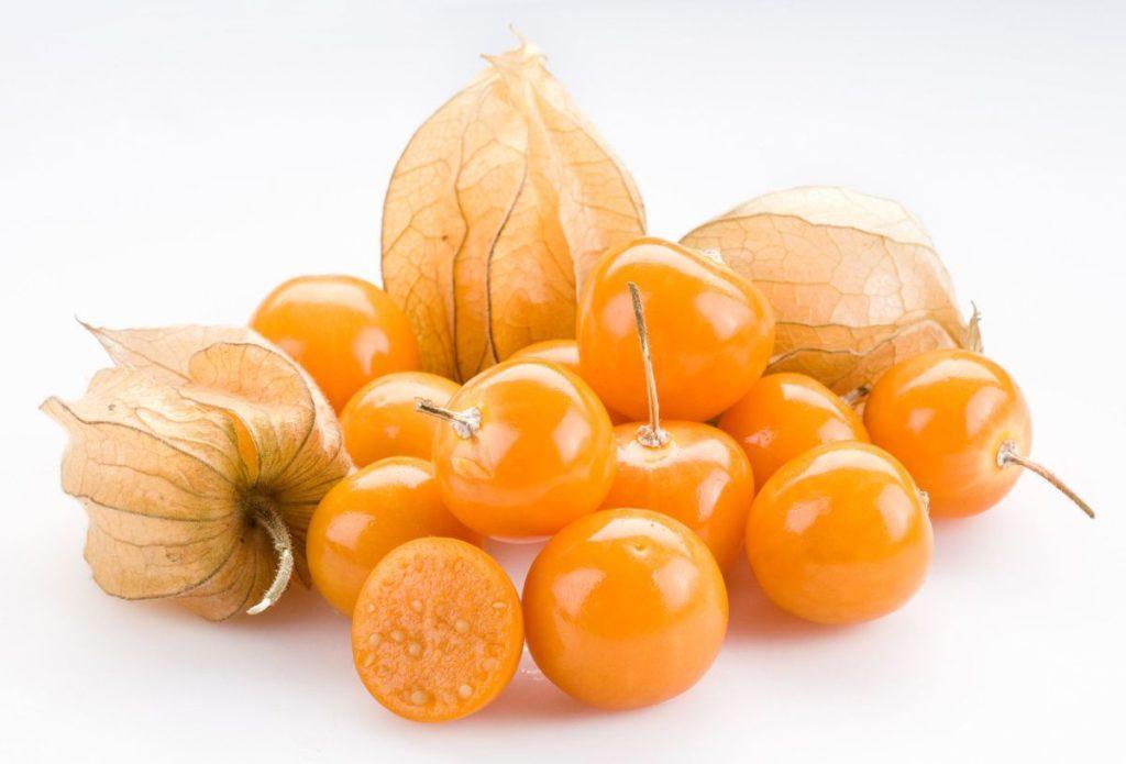 Физалис: описание и выращивание